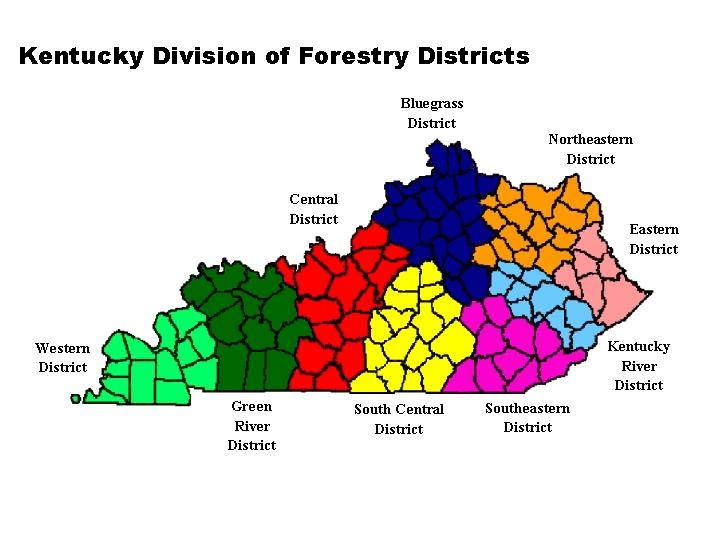 Kentucky Division of Forestry Districts