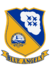 Blue Angels Insignia.png